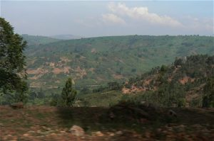 The hills of Rwanda; many forests have been cut down