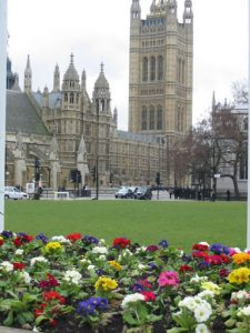Parliament Square and flowers