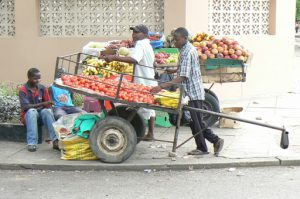 Portable vegetable carts.
