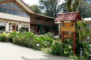 One of many hotels in Monteverde
